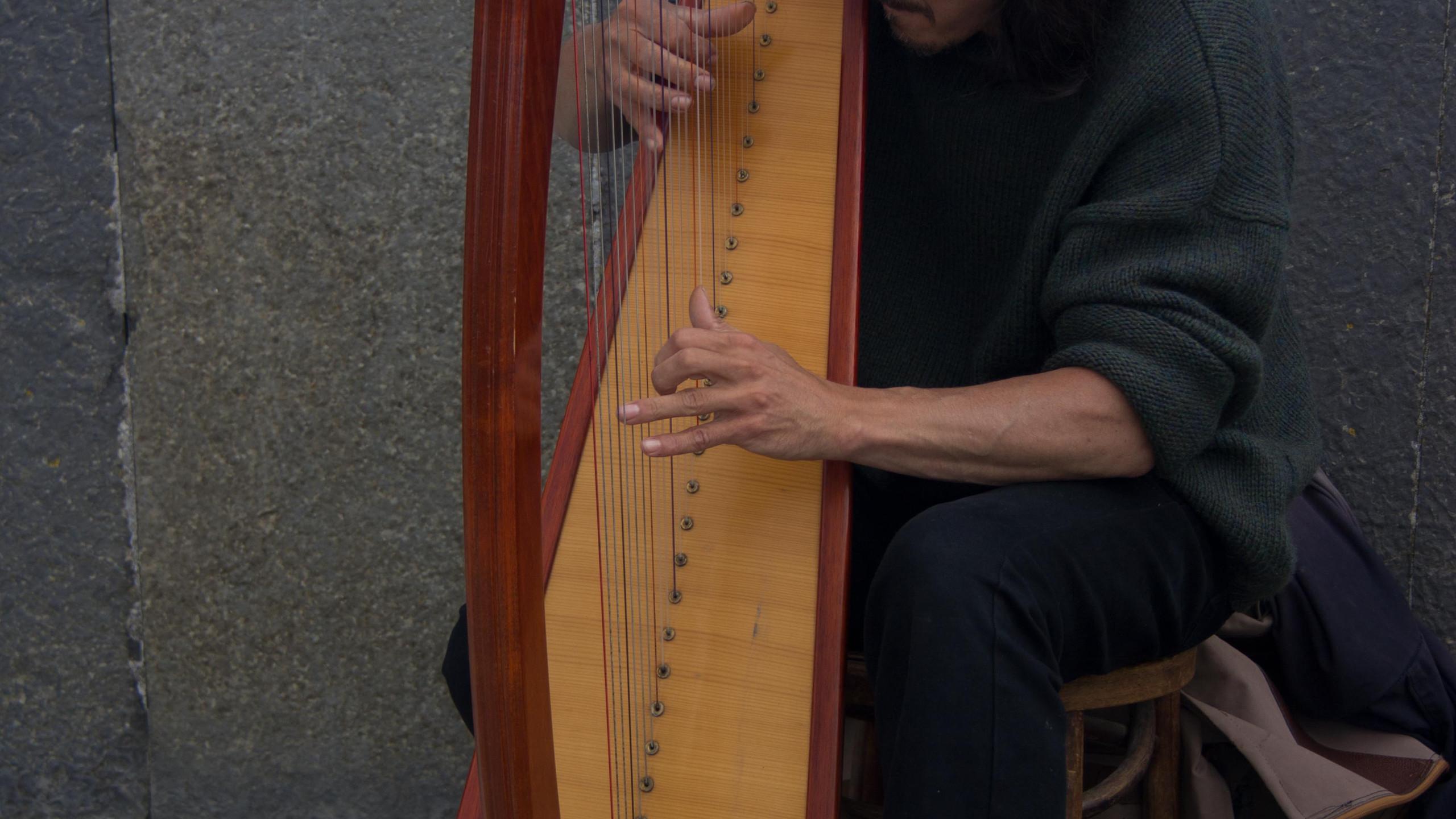 Harpist at the Cliffs