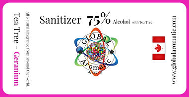 Sanitizer web site Gb.jpg