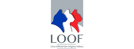 nouveau-logo-LOOF-chat.jpg