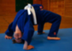 Erle sola judo