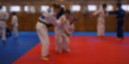 sola judo