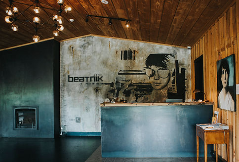 beatnik reception