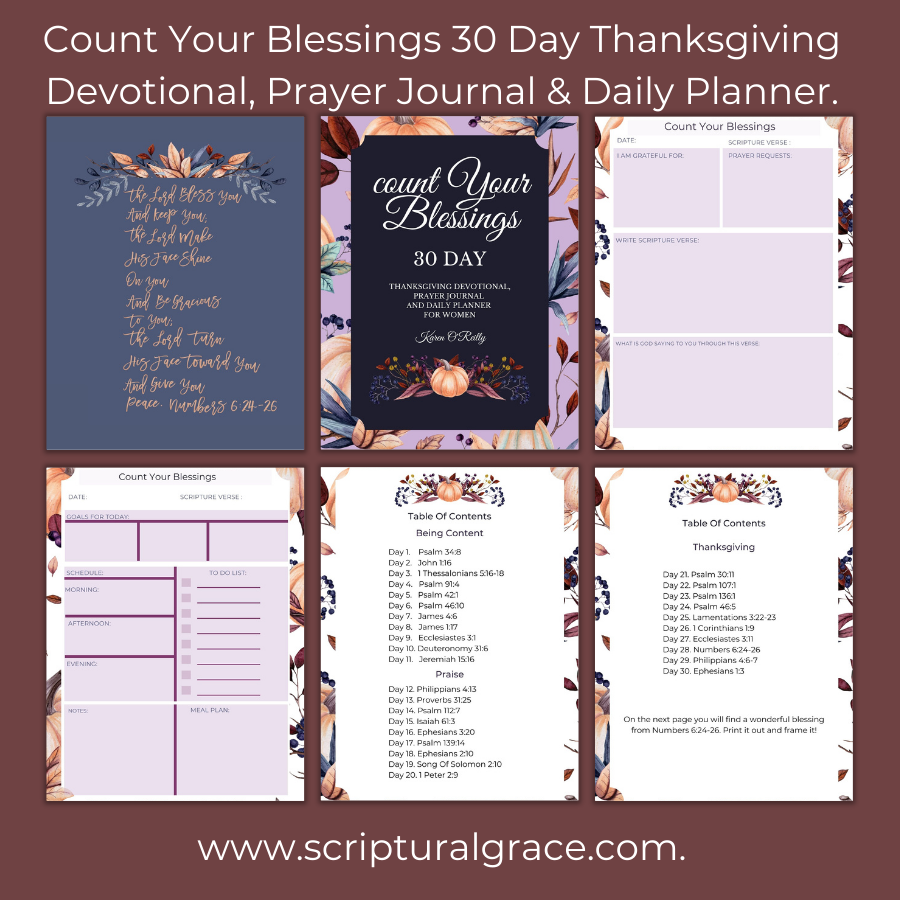 Count Your Blessings 30 Day Thanksgiving Devotional, Prayer JOURNAL AND DAILY PLANNER.