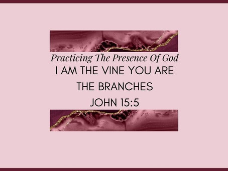 Devotional Bible Study: I Am The Vine You Are The Branches | John 15:5.