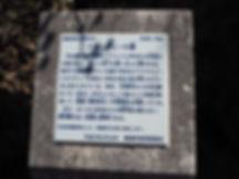 P7250991.JPG