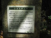 P7251001.JPG