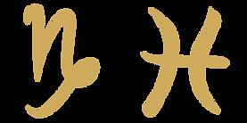 Capricorn / Pisces