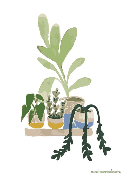 Natural home - Group of plants