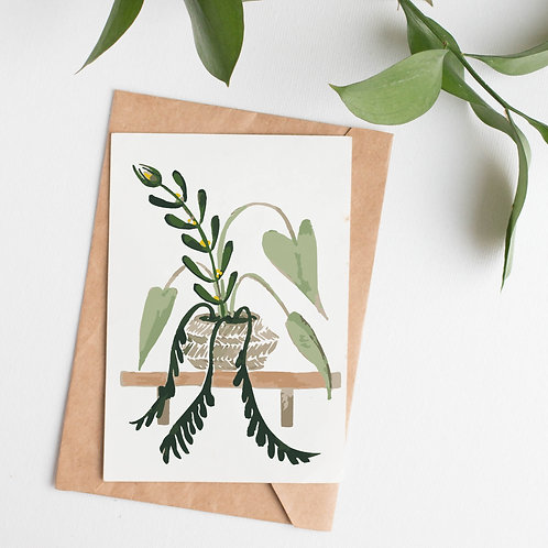 Natural Home - House plant inspired cards