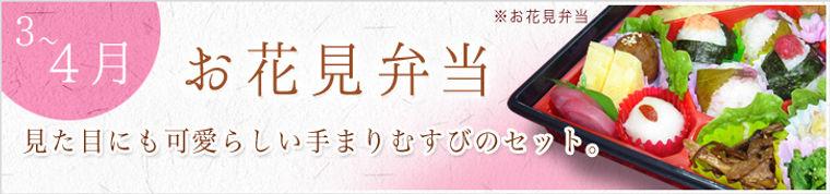 お花見弁当.jpg