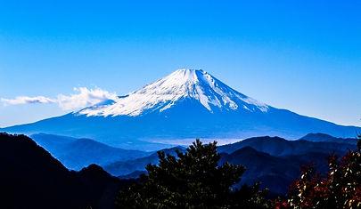 shizuoka.jpeg
