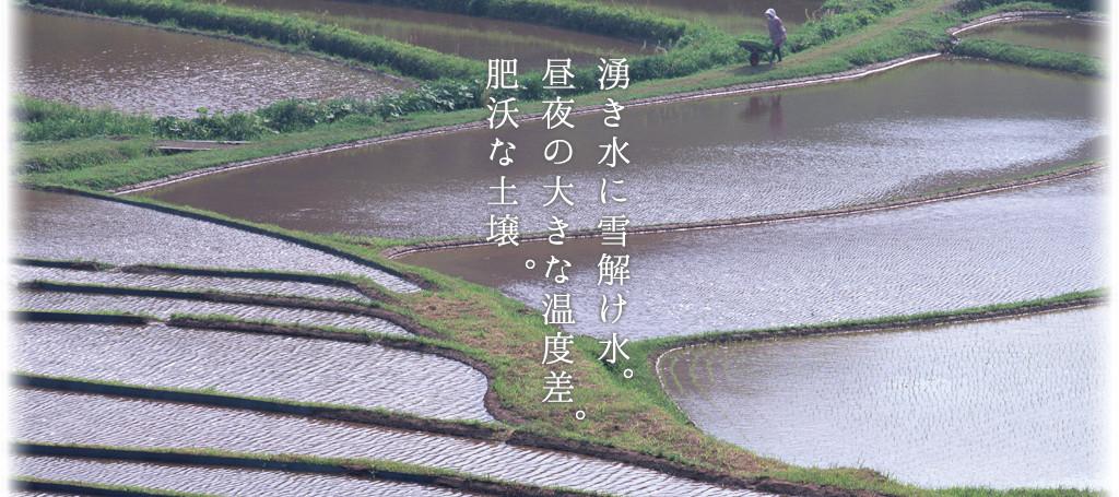mainvisual_01.jpg