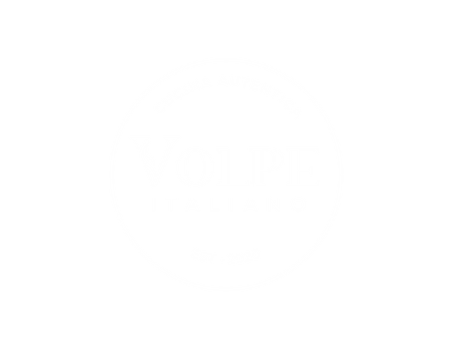 volpe logo - white.png