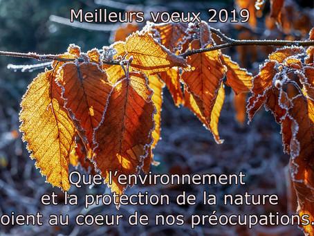 Lerpt-Environnement vous souhaite une bonne année !