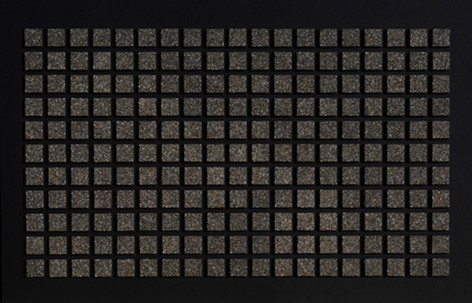 Dents de micromammifères - 90x140 cm