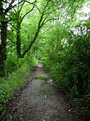 Lerpt-Environnement chemin