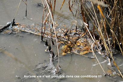 Lerpt-Environnement pollution Lizeron