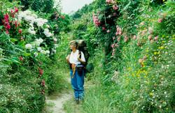 Landschaft und Wandern (40)_edited