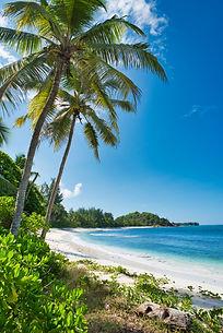 lemuria-seychelles-2019-jt-beach-02_hd.j