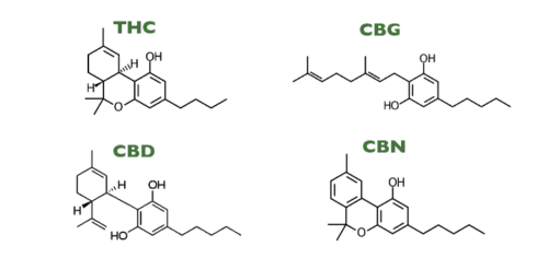 chemical compounds of cannabinoids
