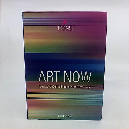 ICONS ART NOW BY BURKHARD RIEMSCHNEIDER / UTA GROSENICK (TASCHEN)