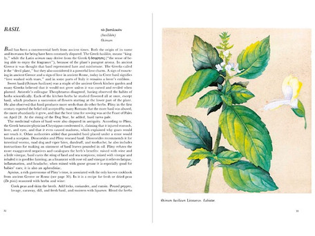 Ancient Herbs in the J. Paul Getty Museum Gardens (FREE DIGITAL BOOK)
