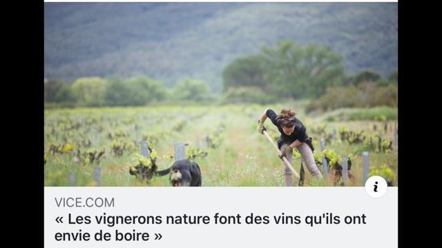 vignerons nature.png