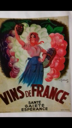 vins de france.png