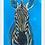 Thumbnail: Zachary the Zebra
