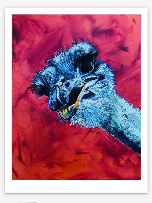 Isaac the Ostrich