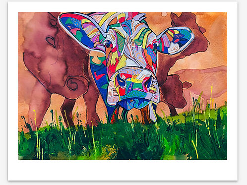 Chica the Cow - Fine Art Print