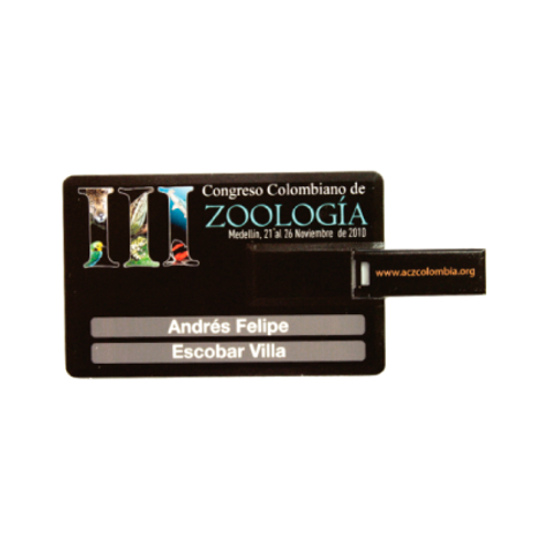 040. Memoria USB tarjeta