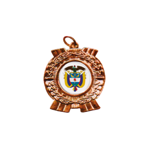 M03. Medalla estándar