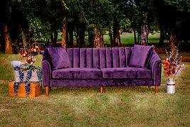 Fall Purple.jpg