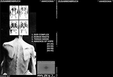 027 - ZUSAMMENBRUCH - ANHENDONIA GEN.jpg