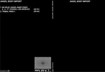 028 - ANGEL BODY IMPORT.jpg