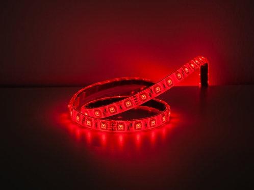 BASIC LED STRIPE RGB/W 24V (5m)