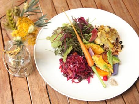 自然栽培野菜を使った極上オーガニック料理レストラン おもてなしも最高レベル!
