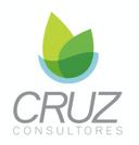 Cruz consultores.png