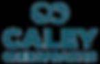 Logo_Ocean blue logo .png