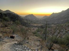 Phoenix Mountain Nature Trail #304