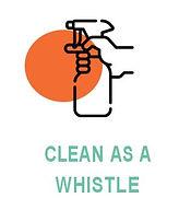 cleanaswhistle.JPG