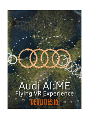 Flying VR Experience