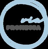 VP_Logo_BG.png