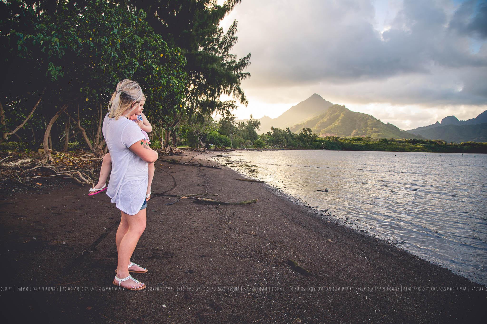 AlohaOhanaSession8