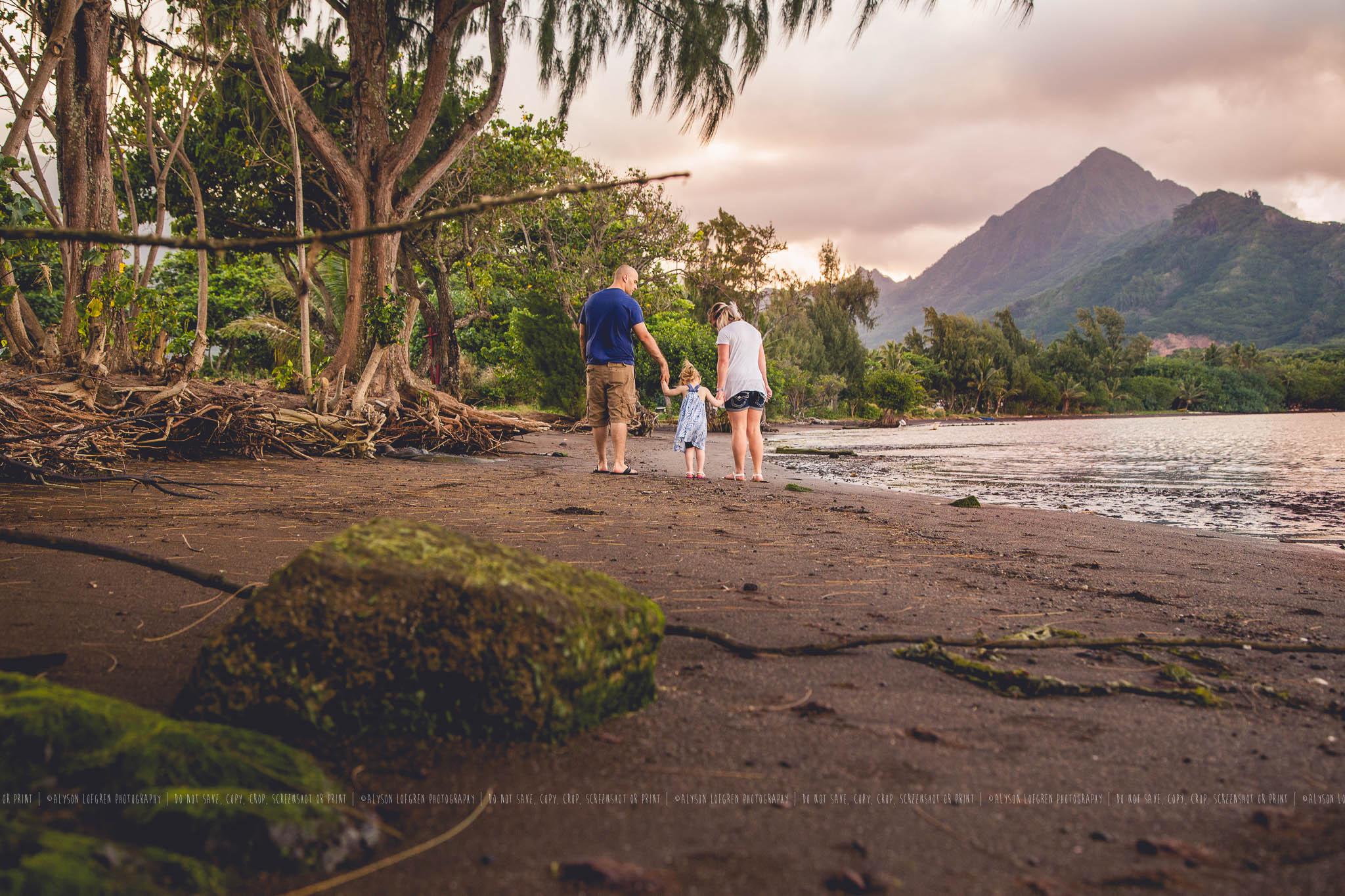 AlohaOhanaSession16