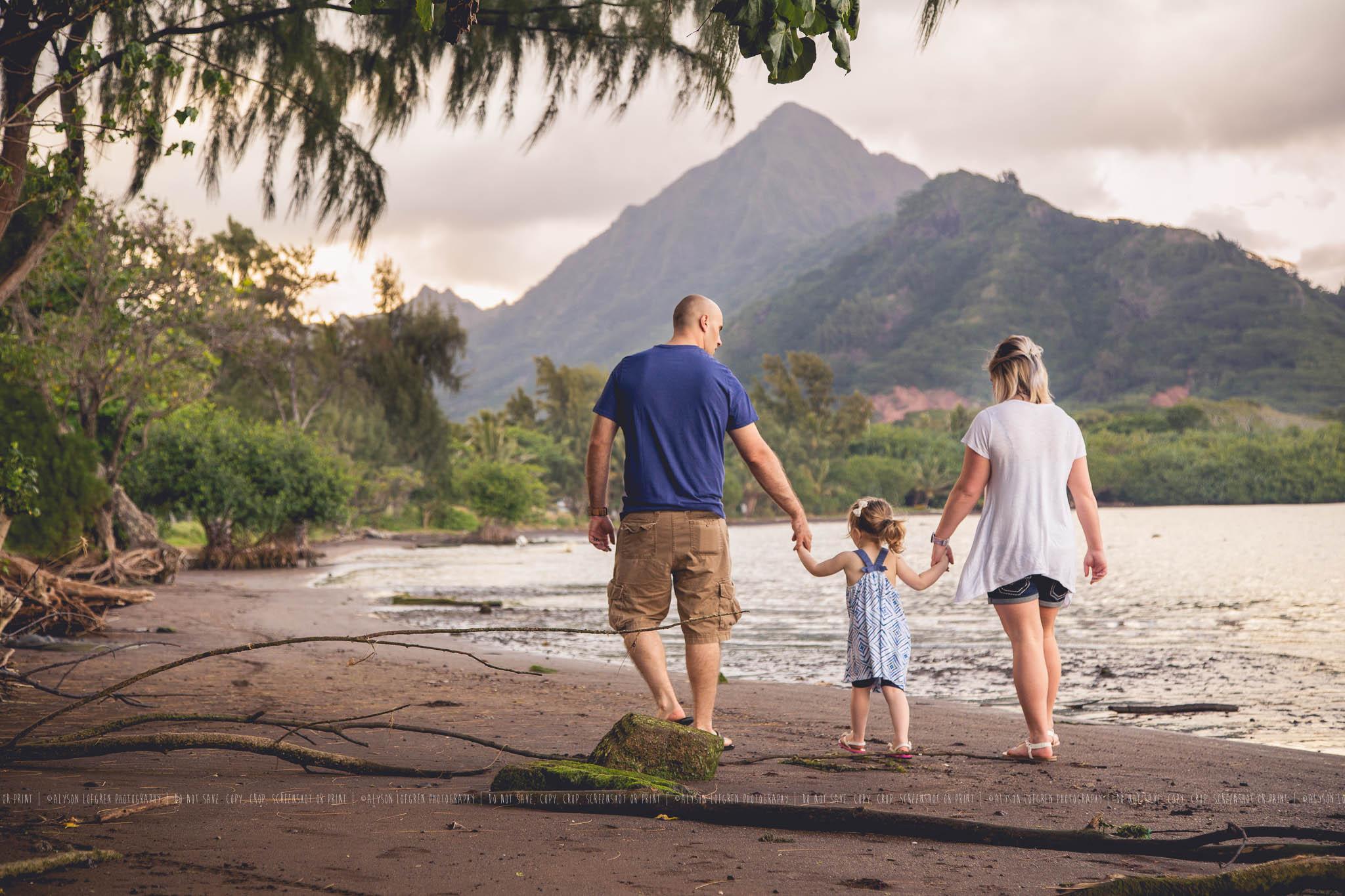 AlohaOhanaSession15