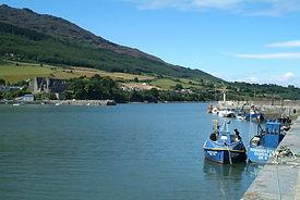 medium-Carlingford Lough1.jpg