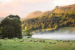medium-Glencar Lake.jpg