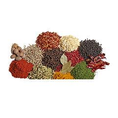 herbs spices.jpg
